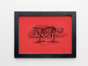 הדפס של רישום של נמר בנגלי על נייר אמנות צהוב\אדום\סגול\אפור\בלוק עץ